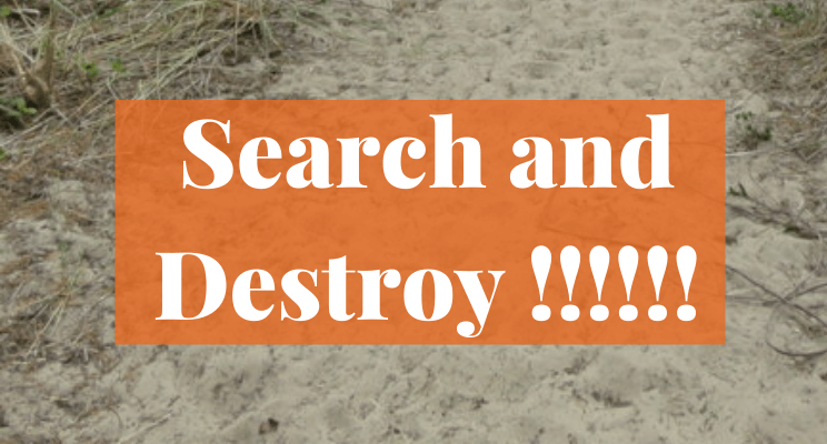 Sand. Text: Search and Destroy !!!!!!